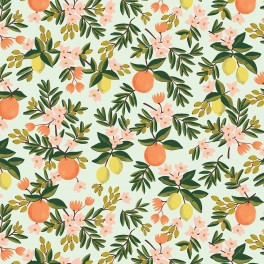 "COTTON ""primavera citrus floral mint"""
